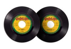 Record Art   Predator Dub Assassins   2013