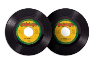 Record Art | Predator Dub Assassins | 2013